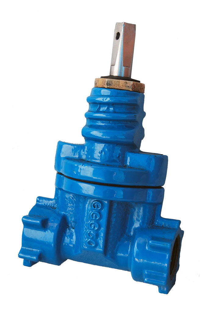 Resilient Seat Gate Valve 12A